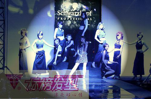 发型师必修2011年发型设计,日韩吹风,超级烫发,超级染发!
